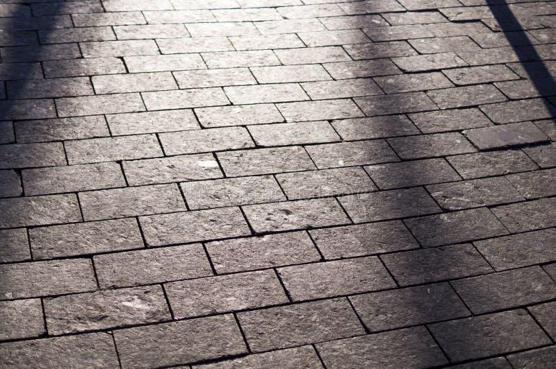 Sombras no passeio pavimentado telha com perspectiva fundo, iluminação fotos de stock royalty free