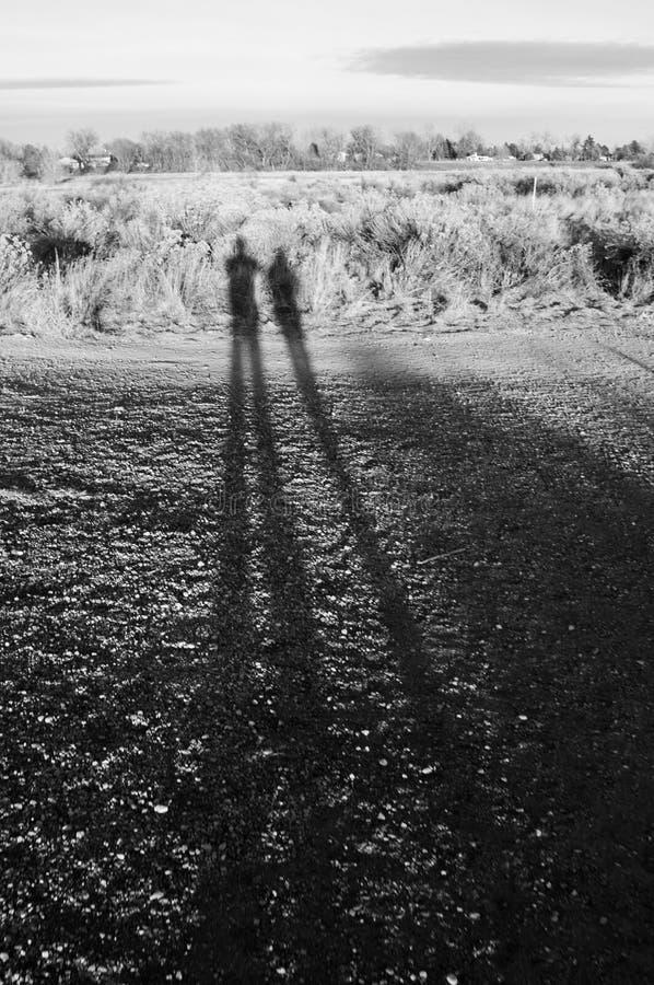 Sombras preto e branco no campo imagens de stock royalty free