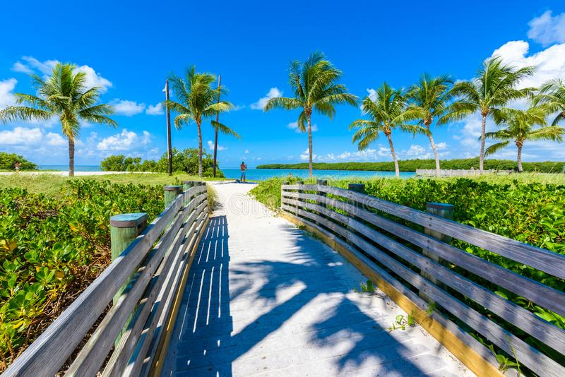 Sombrero Beach with palm trees on the Florida Keys, Marathon, Florida, USA. Tropical and paradise destination for vacation royalty free stock image