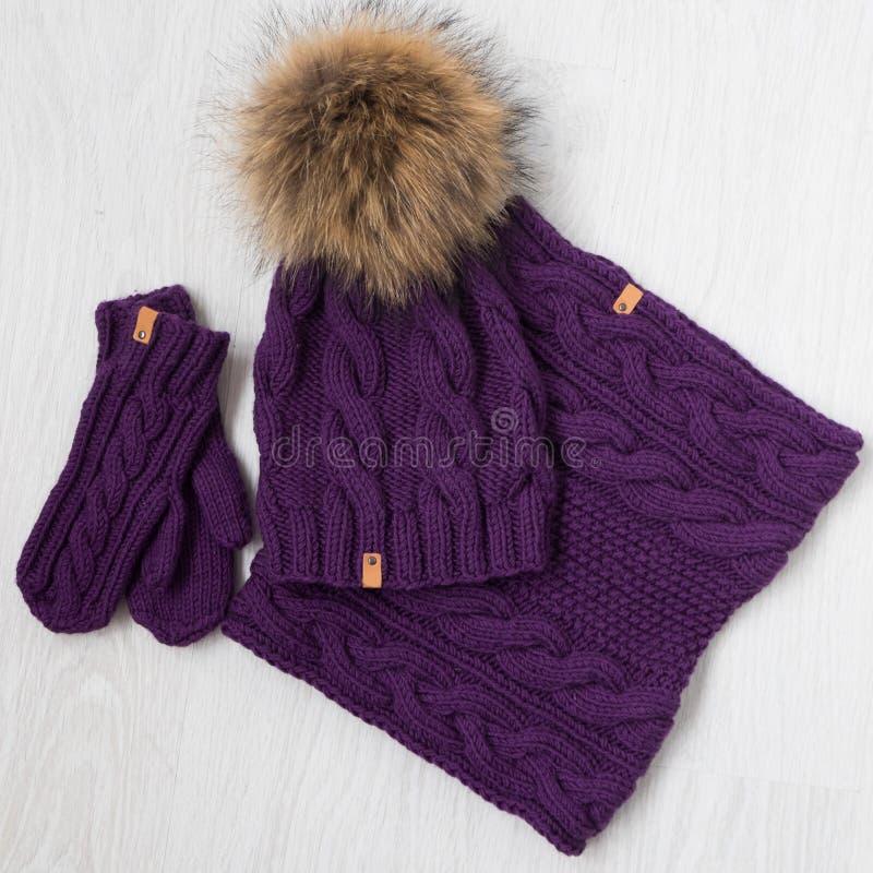 Sombrero de punto, bufanda y nittens del invierno imagen de archivo