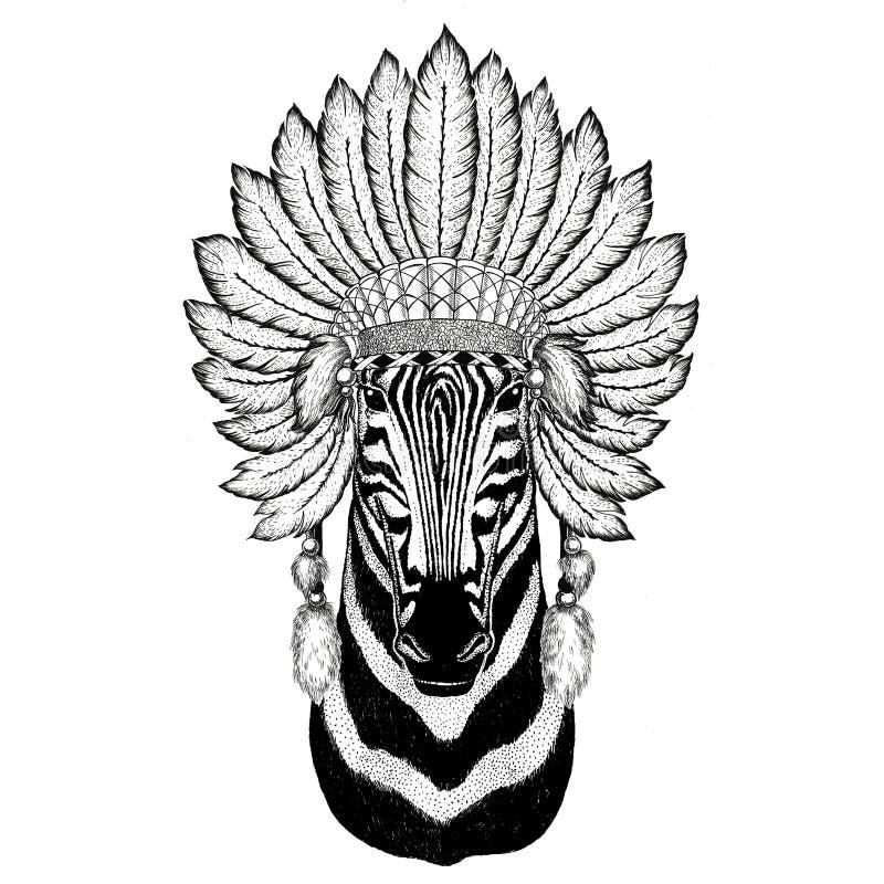Sombrero del indiat del animal salvaje del caballo de la cebra que lleva con la imagen del ejemplo del grabado del vintage del es ilustración del vector