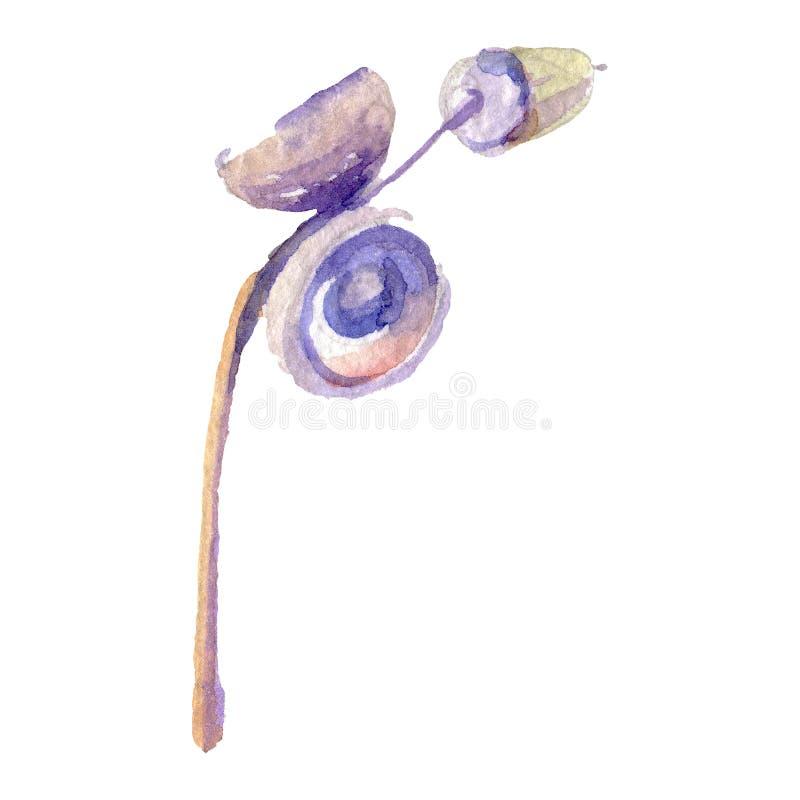 Sombrero del marrón de la bellota del bosque Sistema del ejemplo del fondo de la acuarela Elemento aislado del ejemplo del roble stock de ilustración