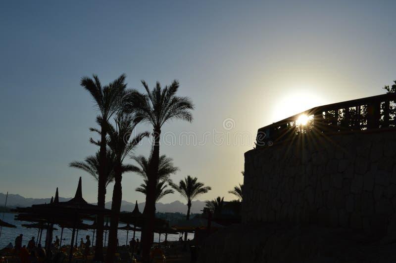 Sombrillas soleadas del verano de la playa de la paja hechas del heno, de la paja bajo la forma de sombreros contra el contexto d imágenes de archivo libres de regalías