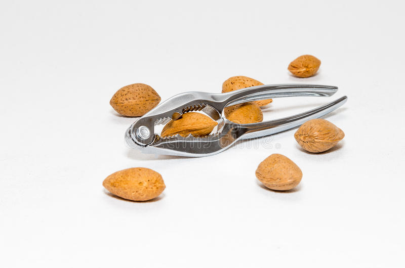 Some Almonds (Prunus dulcis) in shell Isolated and a nutcracker stock image