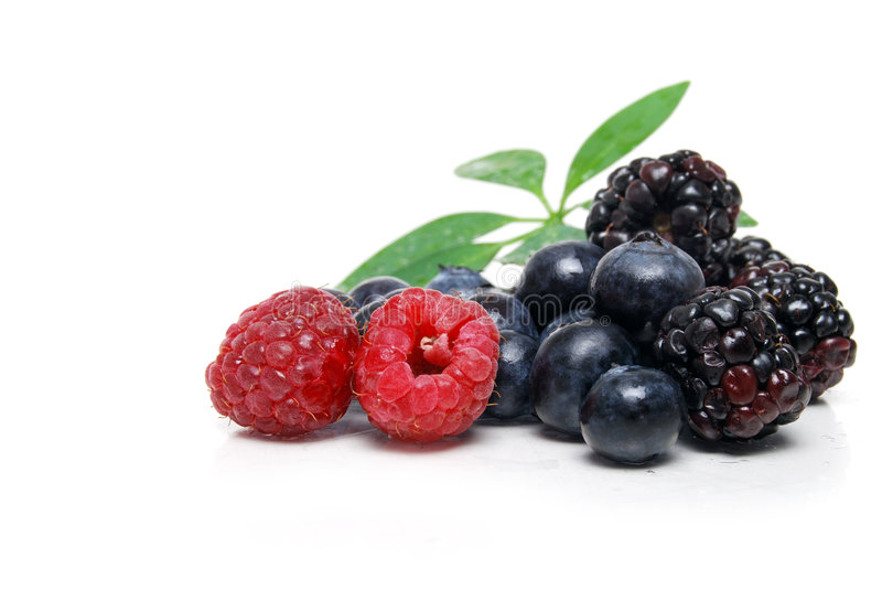 Some berries royalty free stock images
