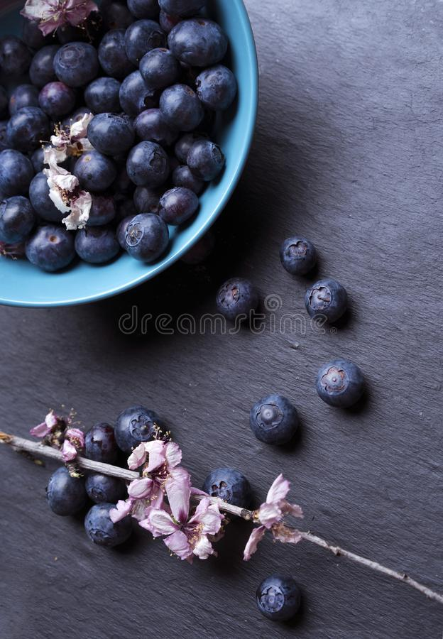 Blueberries in blue bowl with flowers. Some Blueberries in blue bowl with flowers stock photography
