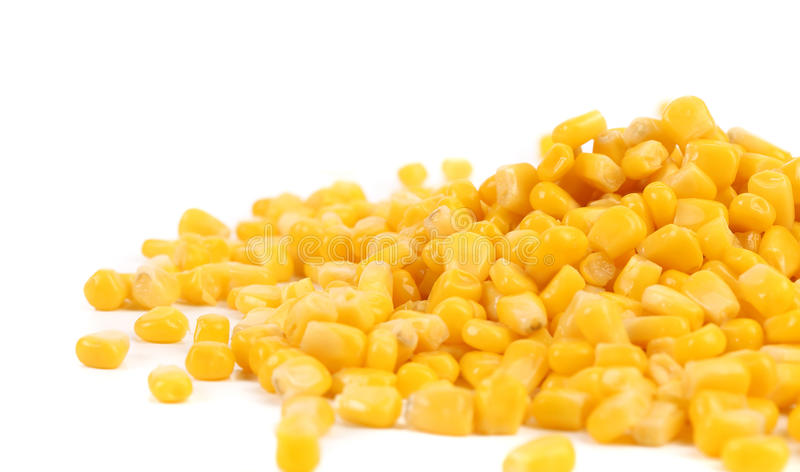 Some corn kernels. stock image