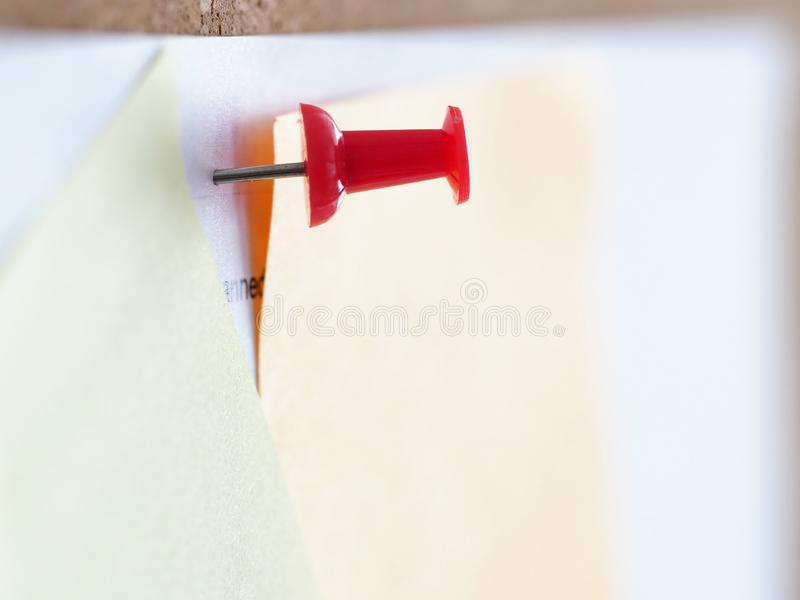 Some documents pinned to cork wall with red pushpin stock images