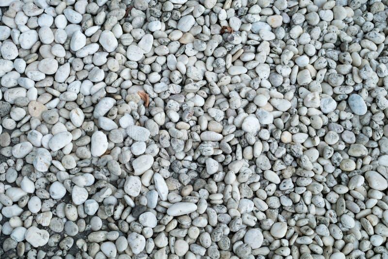 Some dry leaf on gravel stock photo