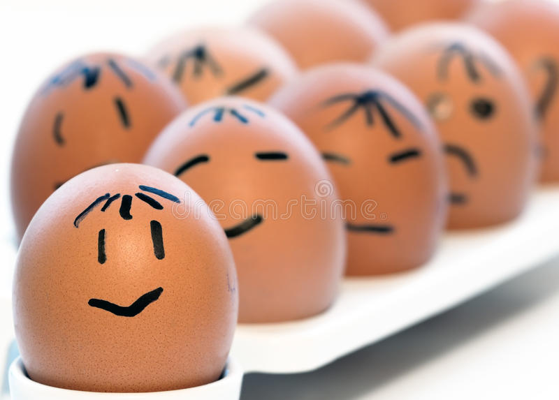 Download Some eggs stock photo. Image of team, development, group - 24245274