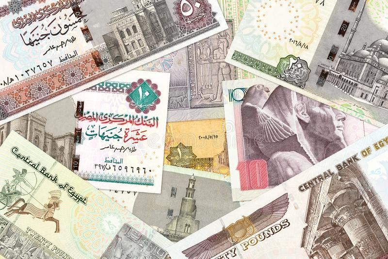 Some egyptian pound bank notes stock photo