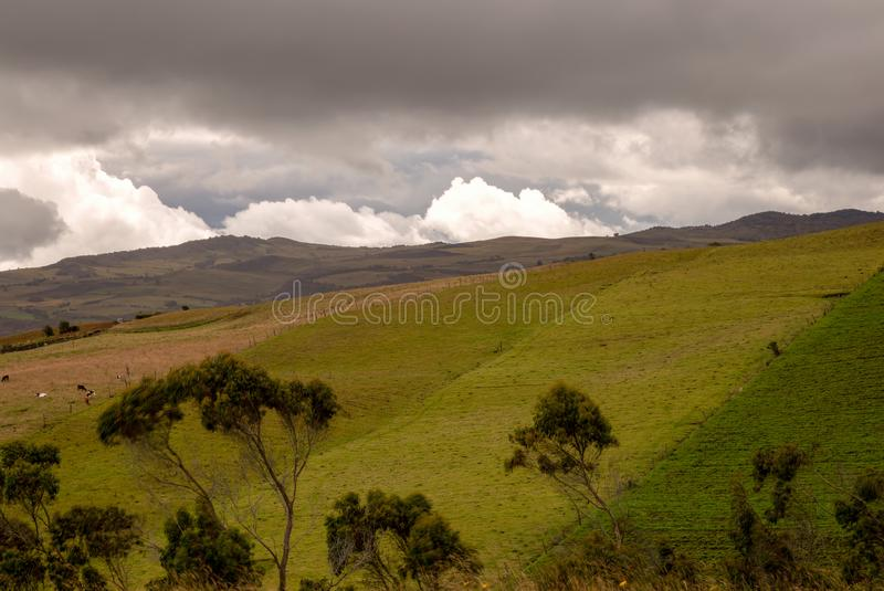 Some farmlands in the high mountains. Multiple exposure of some farmlands in the high mountains of the central Andes of Colombia in an overcasted day stock photo
