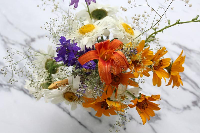 Some flowers from meadow stock photography