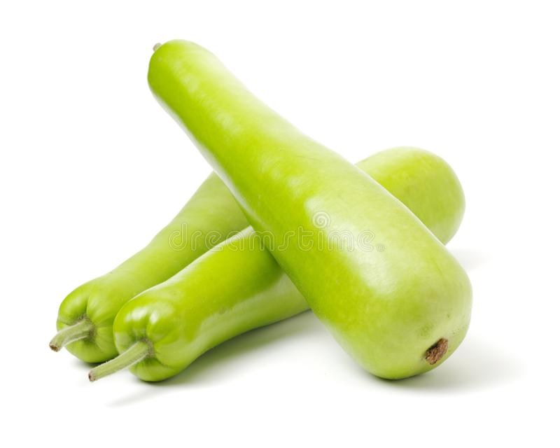 Some good quality freshly imported green hairy marrow gourds of a gourmet supermart. Beautiful green color and outlines silhouet. Tes of the vegetable makes a stock photo