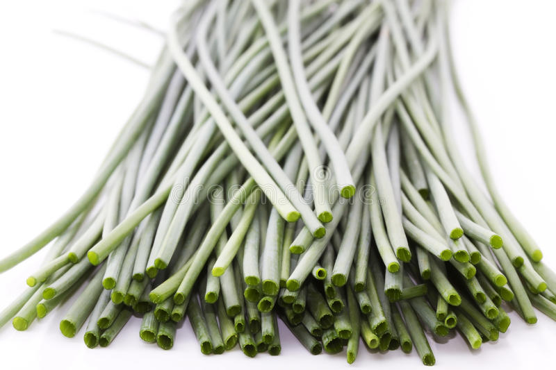 Some Green Chives Royalty Free Stock Photo