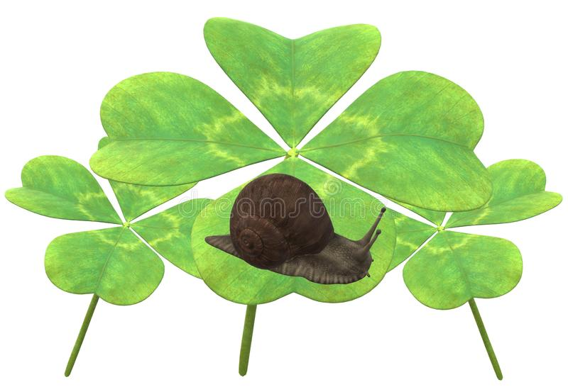 Some green four leaf clover leaves with a snail vector illustration