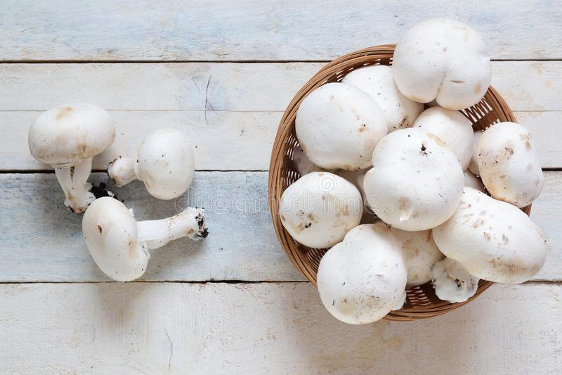 Some natural mushrooms in a basket on a white wooden table in a rustic kitchen royalty free stock photo