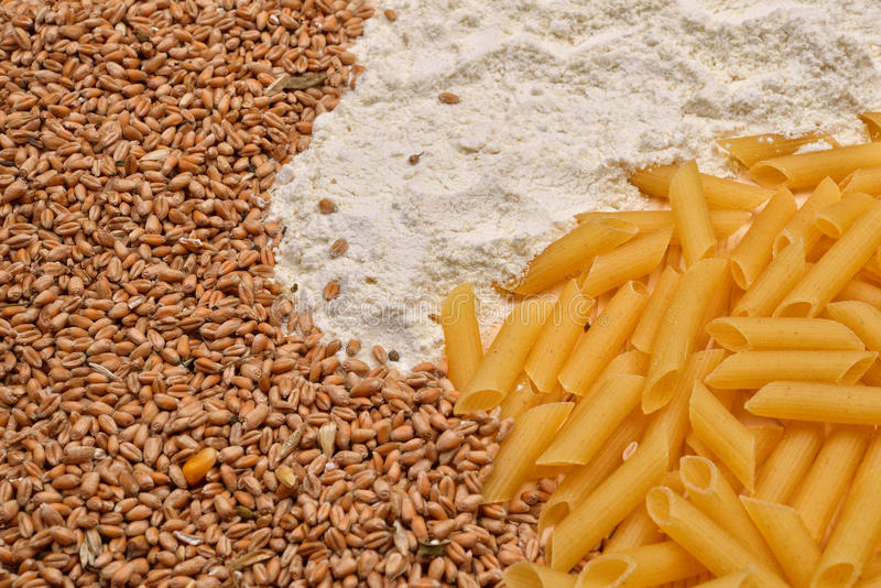 Some raw penne macaroni, wheat, white flour. Raw material and finished product pasta. Healthy food. Selective focus stock image
