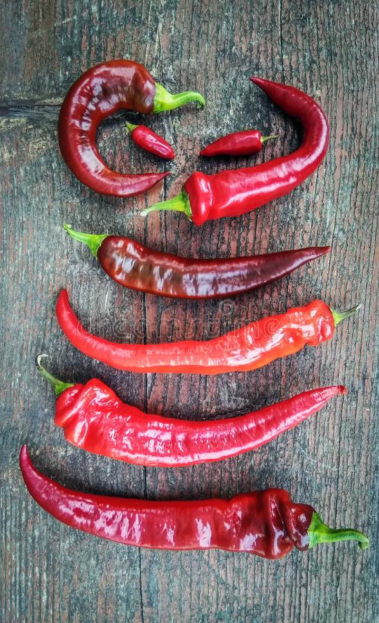 Some red chili peppers on a wooden background. Some colorful red chili peppers on a wooden background stock images