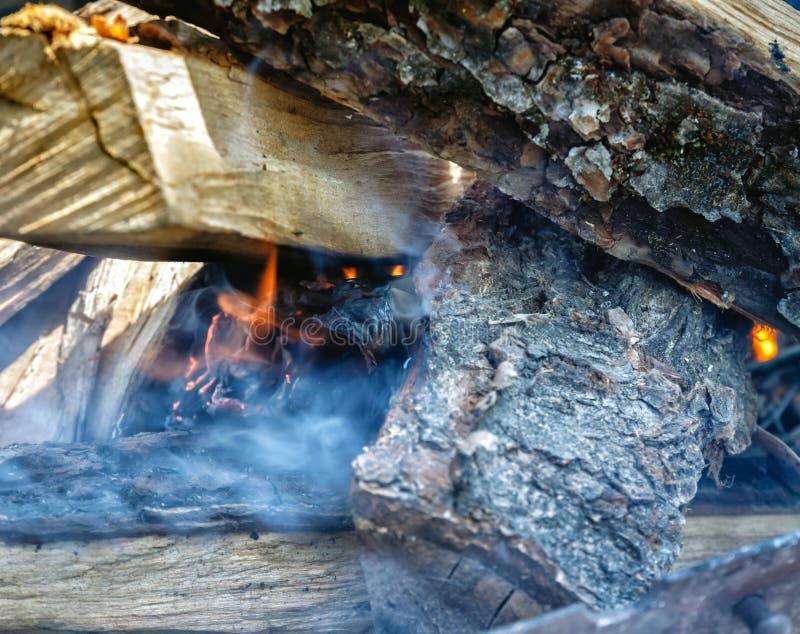 Somente tomou apareceu o fogo entre o madeira-fogo na grade fotografia de stock royalty free