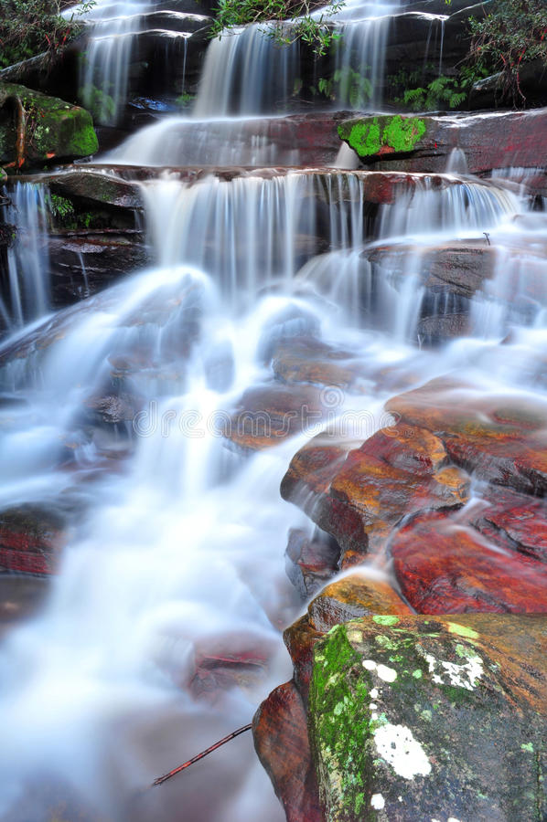 Somersby понижается, австралийский водопад, Новый Уэльс, Австралия стоковая фотография