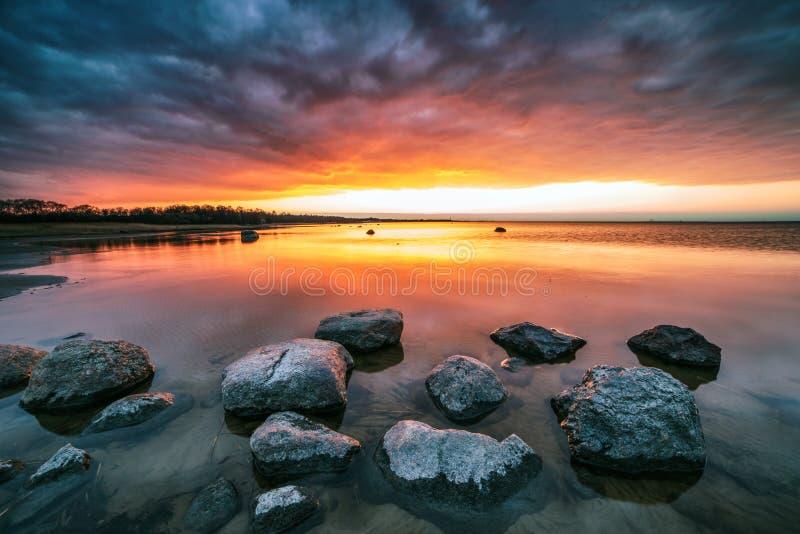 somethere dichtbij Tallinn, Estland royalty-vrije stock foto's