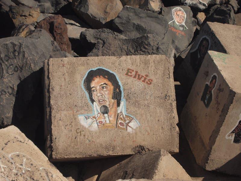 Somiglianza di Elvis sulla pietra fotografie stock libere da diritti