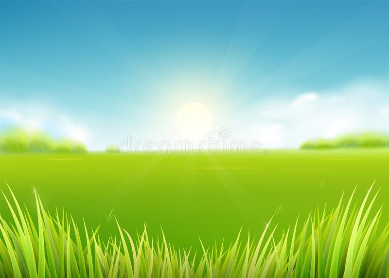 Sommarängfält Naturbakgrund med solen, soliga strålar, gräslandskap royaltyfri illustrationer