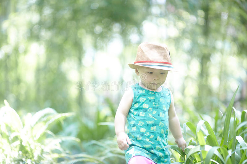 Sommar behandla som ett barn pojken arkivbild