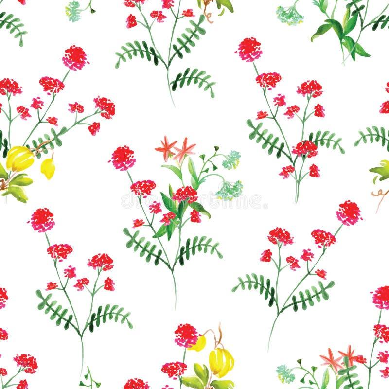 Sommar blommar den sömlösa vektormodellen för vattenfärgen royaltyfri illustrationer