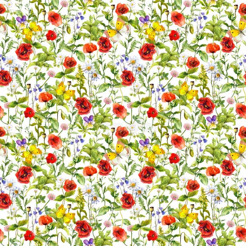 Sommar blommar vallmo, kamomillen, gräs seamless modell vattenfärg vektor illustrationer