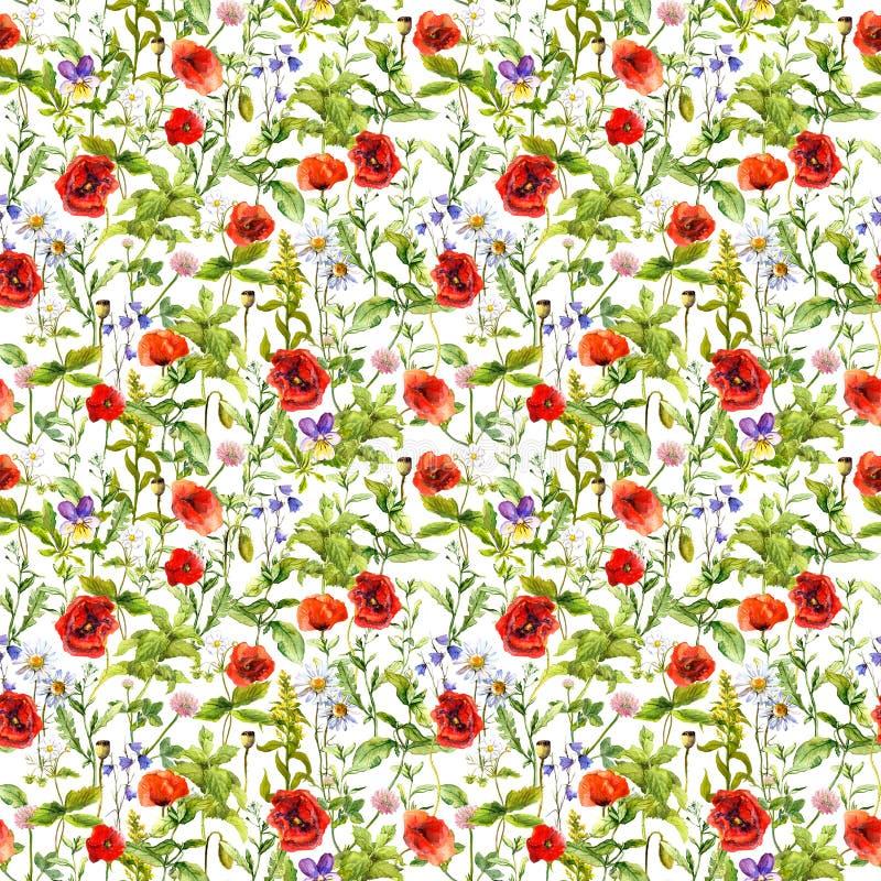 Sommar blommar vallmo, kamomillen, gräs seamless modell vattenfärg stock illustrationer