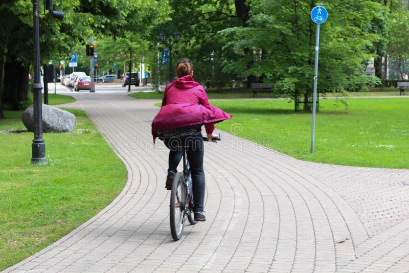 Sommar Cykelväg i stad riga latvia royaltyfri fotografi