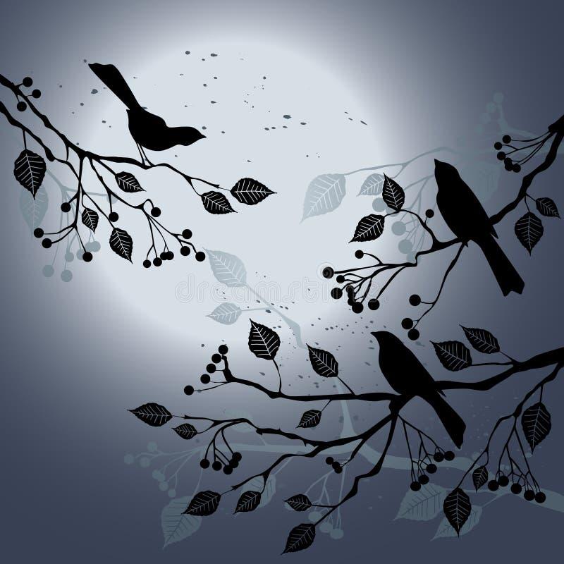 sommar för fågelfilialnatt s vektor illustrationer
