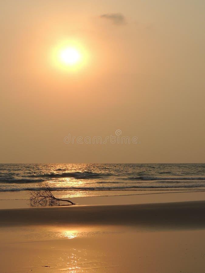 Sommar för filial för sand för himmel för solnedgång för landskapsjösidastrand arkivfoto