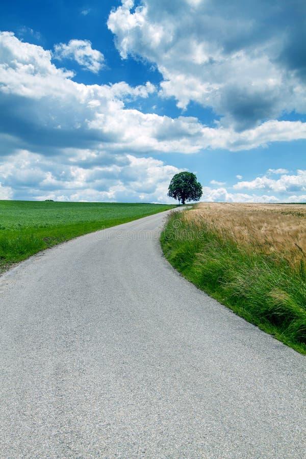 sommar för landsgermany väg arkivfoton