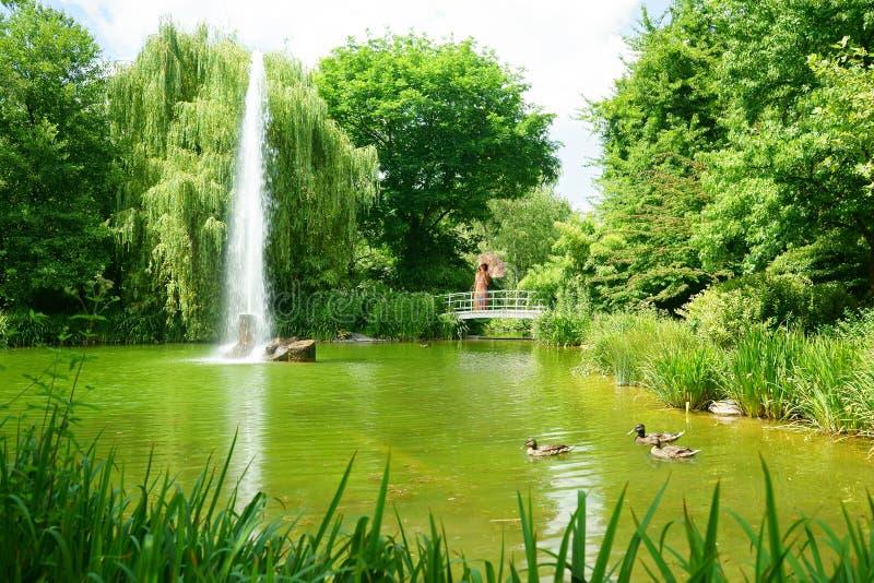 Sommar för romantiker för bro för kvinnaparaplysjö royaltyfri fotografi