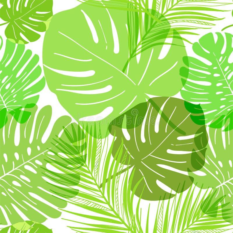 Sommar för sidor för vektormodellgräsplan genomskinlig tropisk vektor illustrationer
