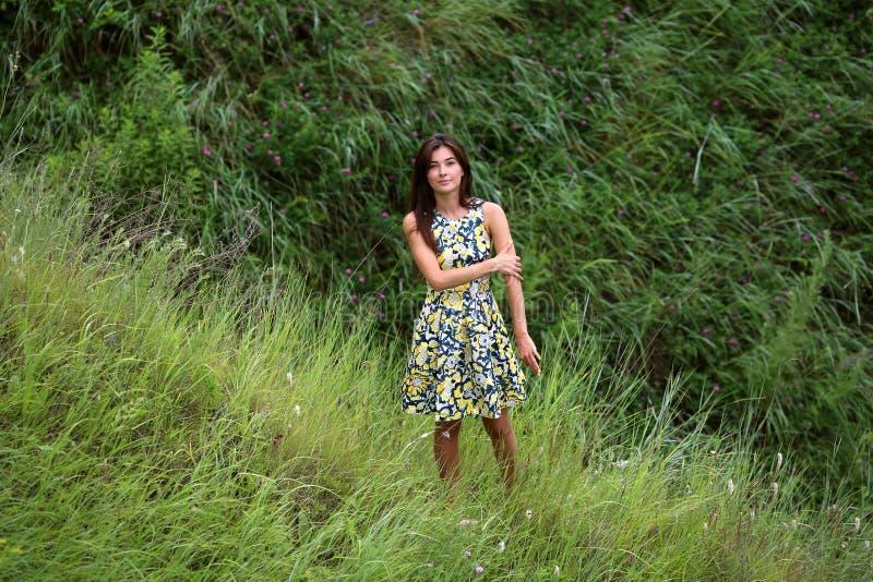 Sommar går på en grön ravin, en ung slank nätt flicka med långt brunt hår i gula sundress för en klänning, tycker om liv fotografering för bildbyråer