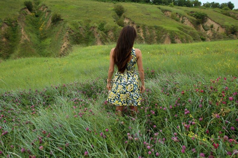 Sommar går på en grön ravin, en ung slank nätt flicka med långt brunt hår i gula sundress för en klänning, tycker om liv royaltyfria foton
