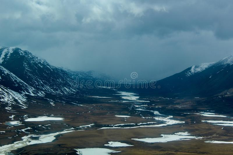 Sommar i arktisk royaltyfri fotografi