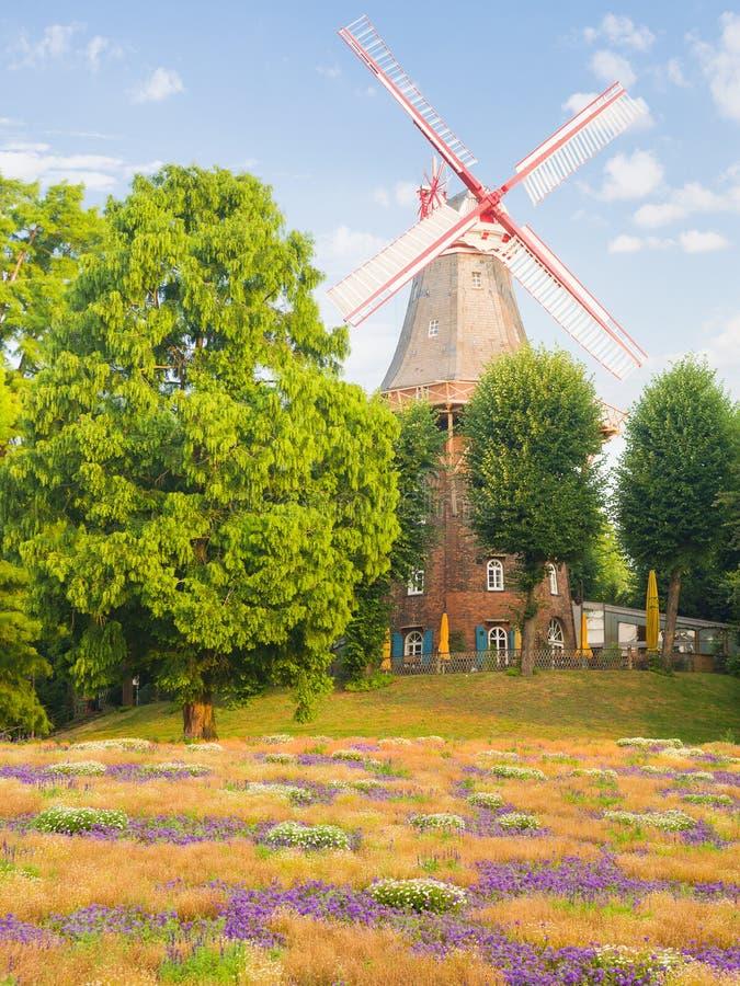 Sommar i Bremen royaltyfria bilder