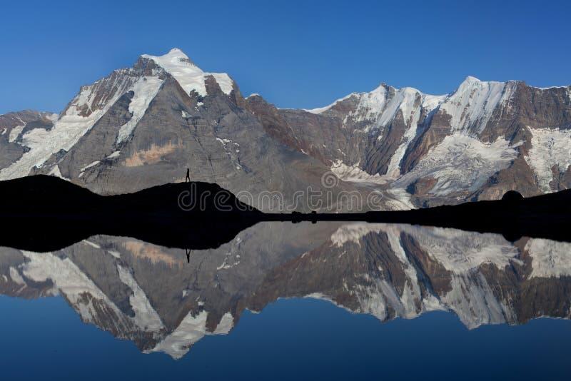Sommar i de schweiziska fjällängarna, Murren område som förbiser Eigeren, reflekterade Monch och Jungfrau berg, i Grauseewli sjön royaltyfri foto