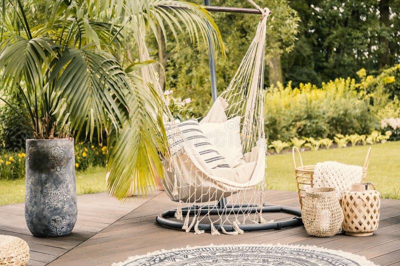 Sommar i den gröna trädgården med en hängmatta och en palmträd på en t royaltyfri fotografi