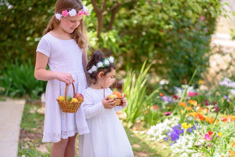 Sommar judisk ferie Shavuot HarvestTwo små flickor i den vita klänningen rymmer en korg med ny frukt i en trädgård arkivbilder