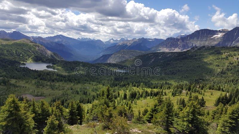 Sommar kommer till de oerhörda kanadensiska steniga bergen royaltyfri bild
