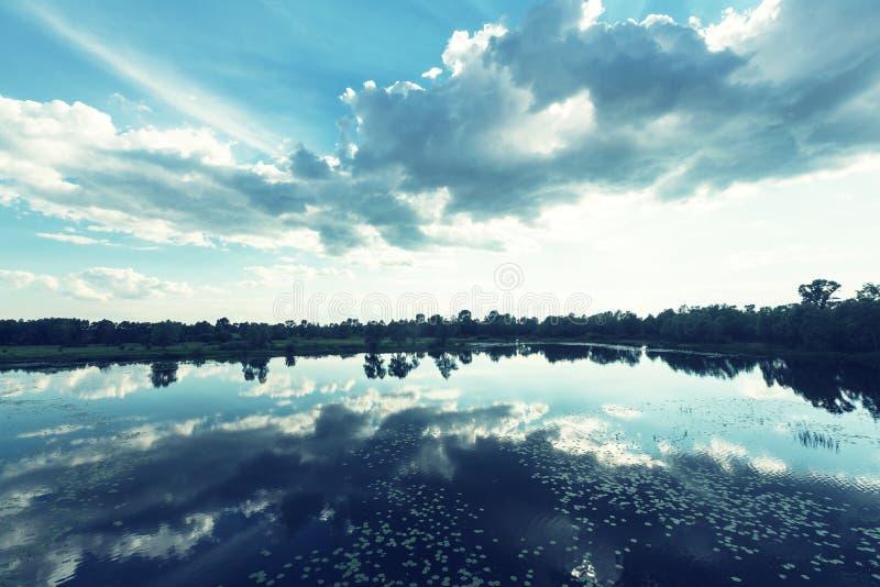 Sommar lake royaltyfria bilder