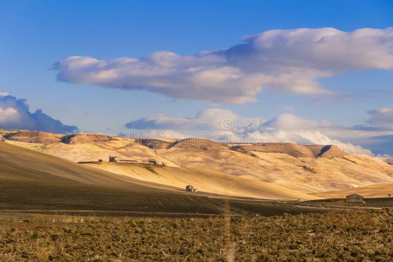 Sommar: lantligt landskap Mellan Puglia och Basilicata: kullar med cornfields och lantbrukarhem italy fotografering för bildbyråer