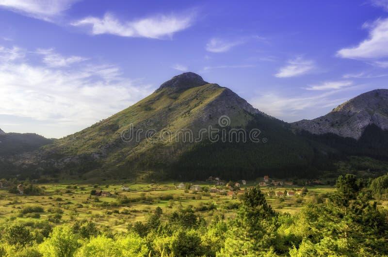 Sommar på en solig dag, berg, gröna fält och ängar Bergby Montenegro arkivbild