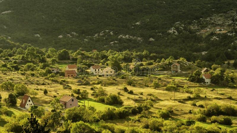 Sommar på en solig dag, berg, gröna fält och ängar Bergby Montenegro royaltyfria bilder